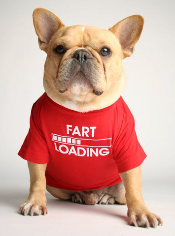 FART LOADING DOG TEE