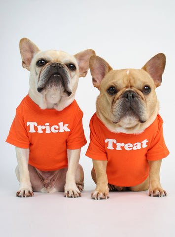 Trick or Treat (2-Pack) Dog Tee