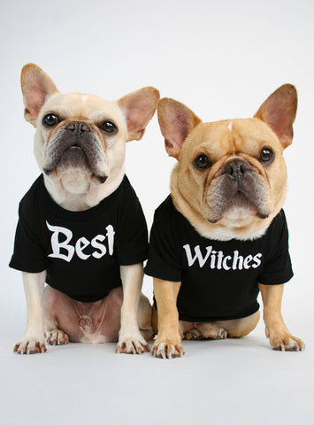 Best Witches (2-Pack) Dog Tee