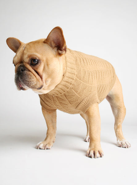 TOT THOT DOG SWEATER