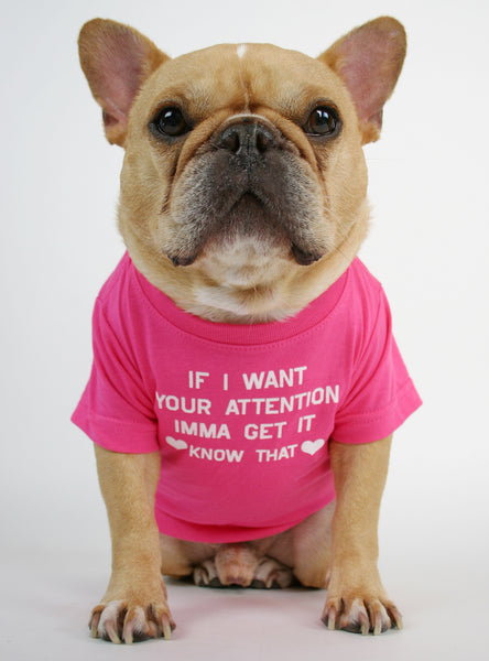 If I Want Your Attention Dog Tee