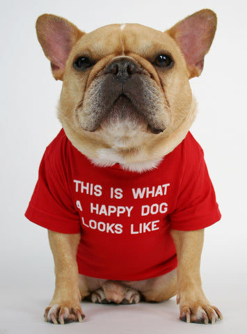 Happy Dog Looks Like Dog Tee