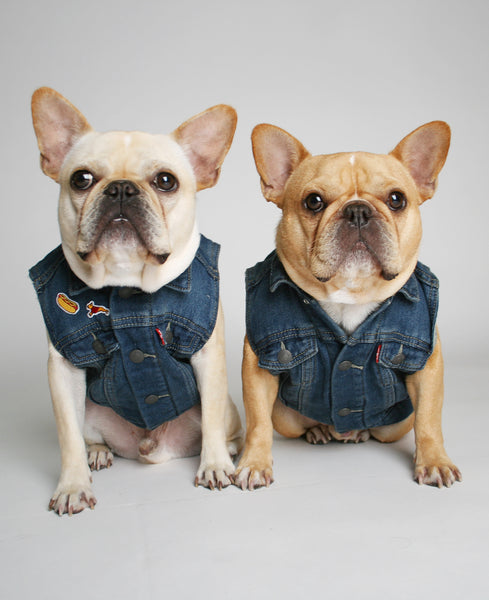 Reclaimed Denim Dog Vest