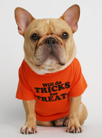 Will Do Tricks For Treats Dog Tee