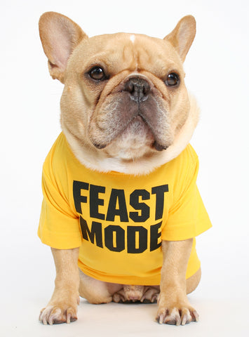 FEAST MODE DOG TEE