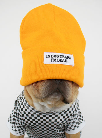 IN DOG YEARS BEANIE