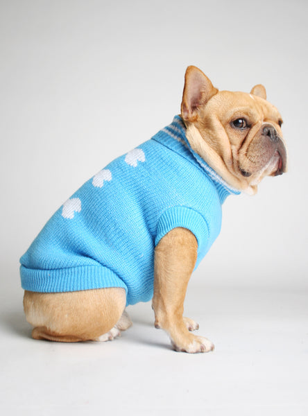GLACIAL BONES DOG SWEATER