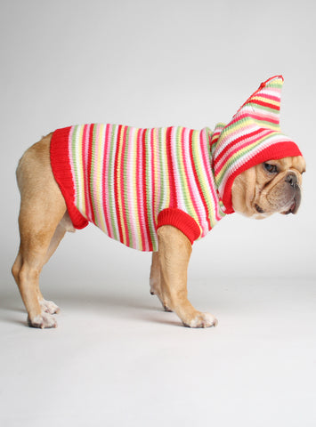FRUIT STRIPE DOG SWEATER