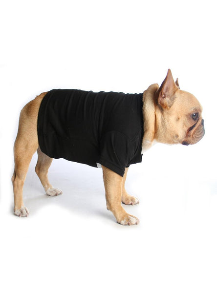 Skipped Leg Day Dog Tee