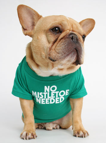 NO MISTLETOE NEEDED DOG TEE