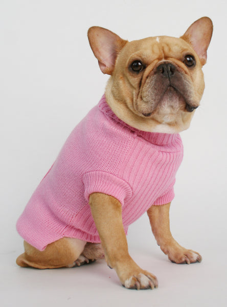 The Strawb Dog Sweater