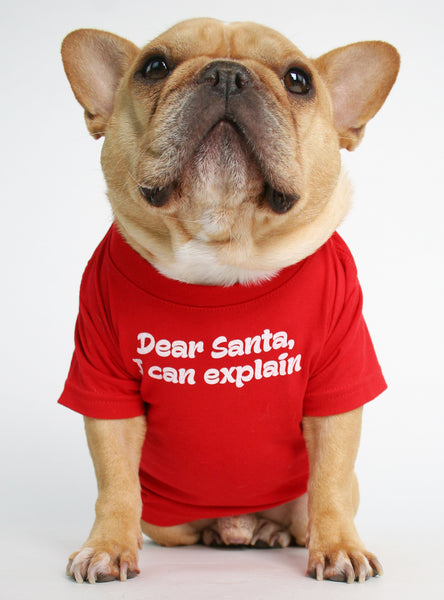 DEAR SANTA I CAN EXPLAIN DOG TEE