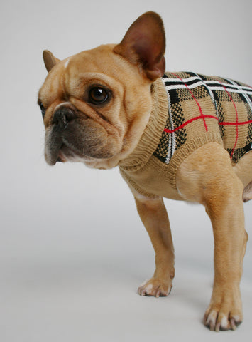 The Furberry Dog Sweater
