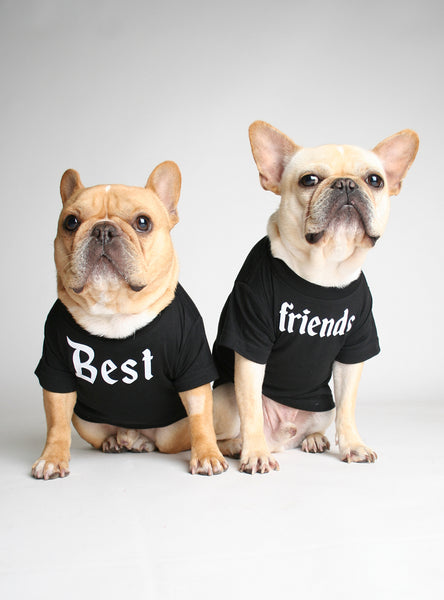 Best Friends (2-Pack) Dog Tee