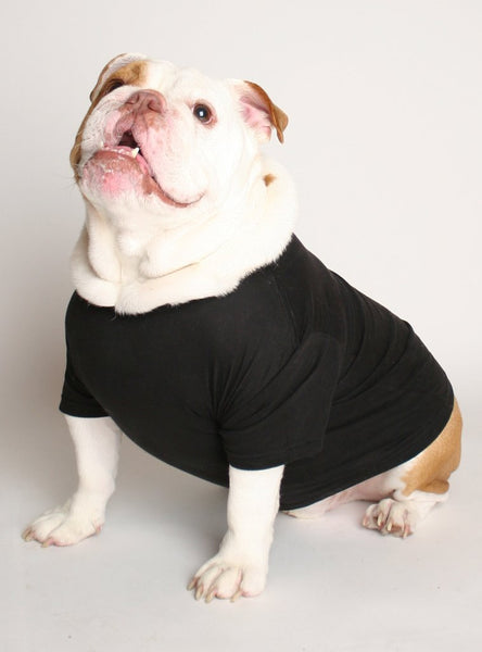 Treats Dog Shirt