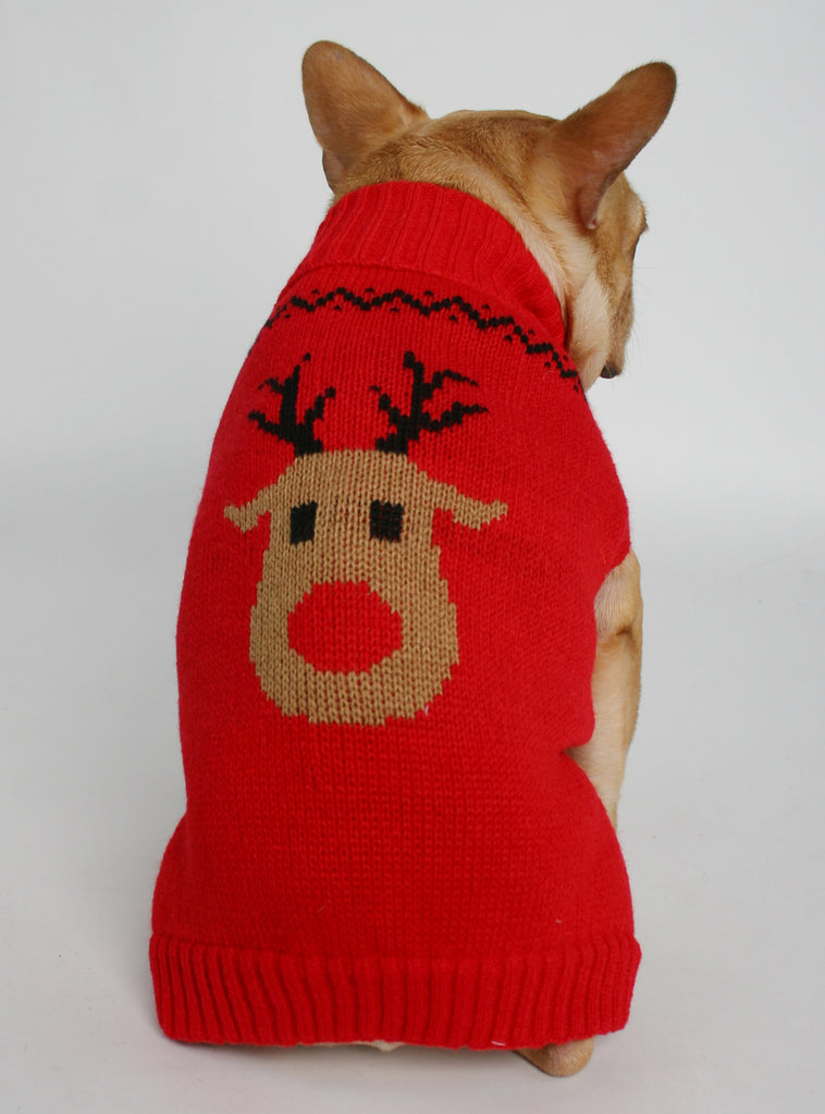 The Red Rudolph Dog Sweater