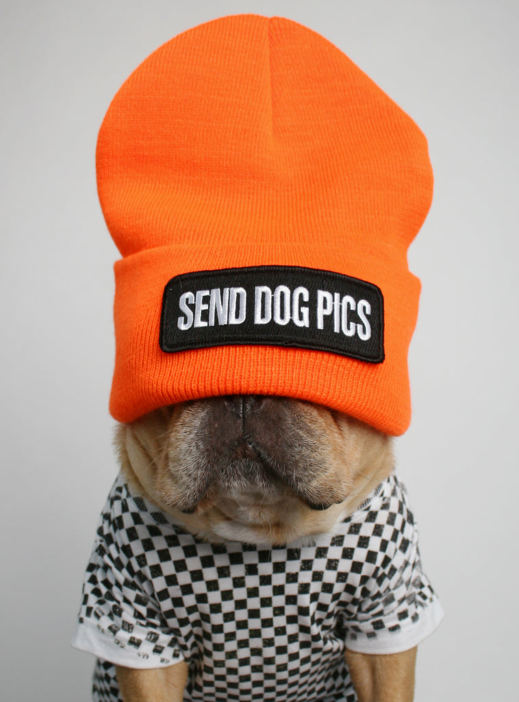 Send Dog Pics Beanie