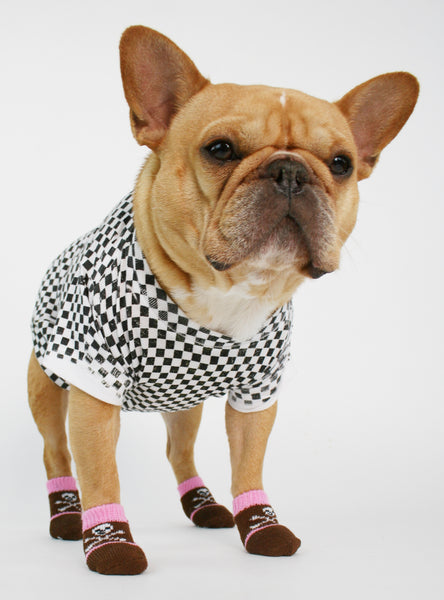 THE DANGER DANGER DOG SOCKS