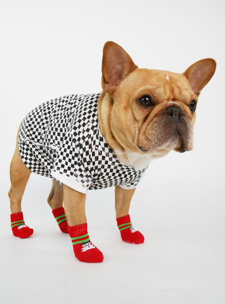 THE FROSTY DOG SOCKS