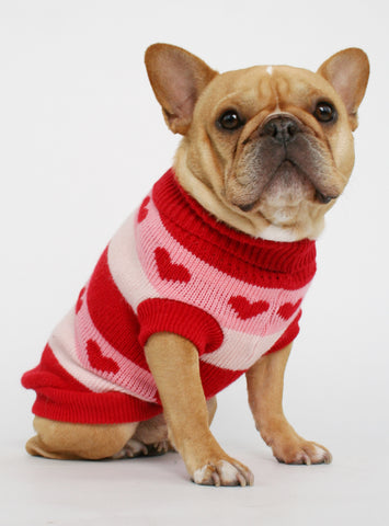 THE SWEETHEART DOG SWEATER