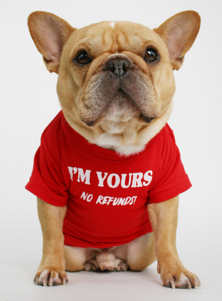 I'M YOURS DOG TEE