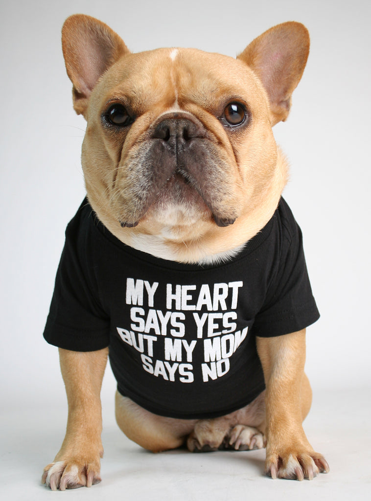 MY HEART SAYS YES DOG TEE
