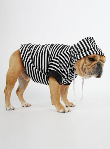 The Stripes Dog Hoodie