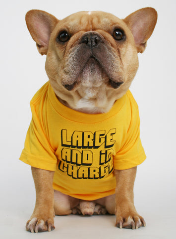 Large And In Charge Dog Tee