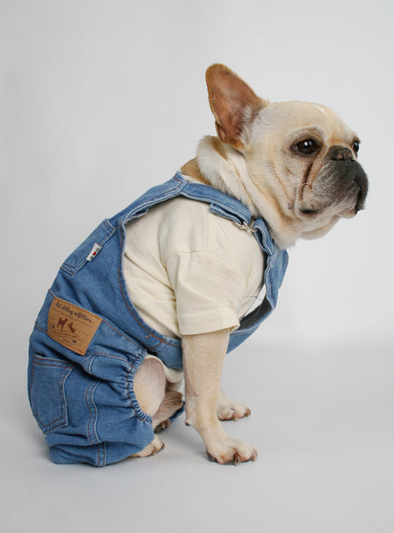 Denim Dog Overalls