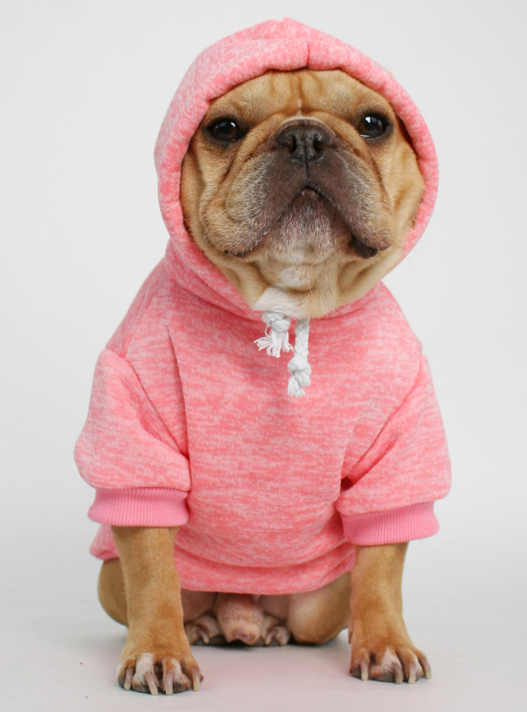 The Frisco Dog Hoodie