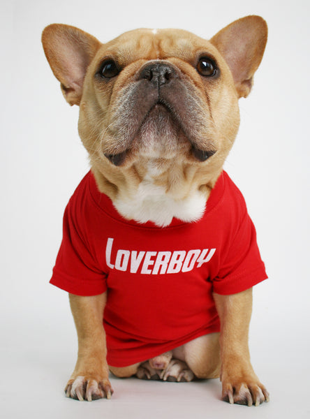 Loverboy Dog Tee