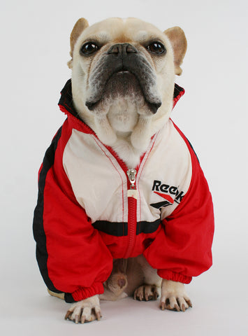 Vintage Reebok Red Track Jacket