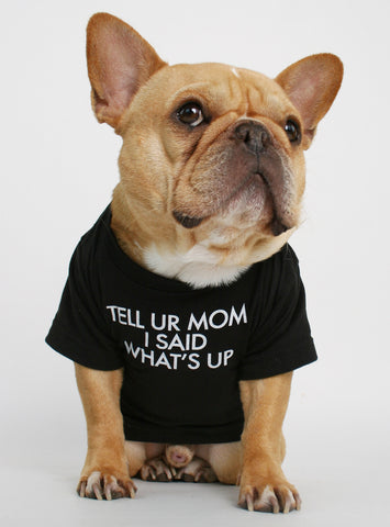 Tell Your Mom Dog Tee