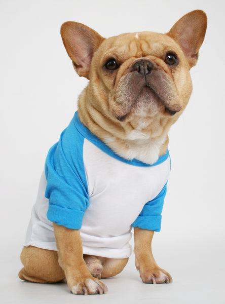The Club Raglan Dog Tee