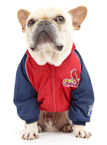 Vintage St. Louis Cardinals Jacket