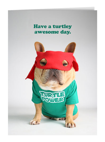Have A Turtley Awesome Day Greeting Card