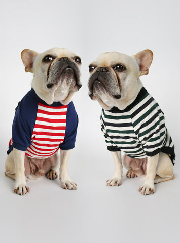 The League Striped (2-Pack) Dog Tee