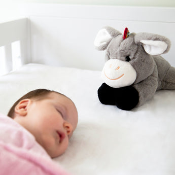Don the Donkey – my solution to unsettled babies