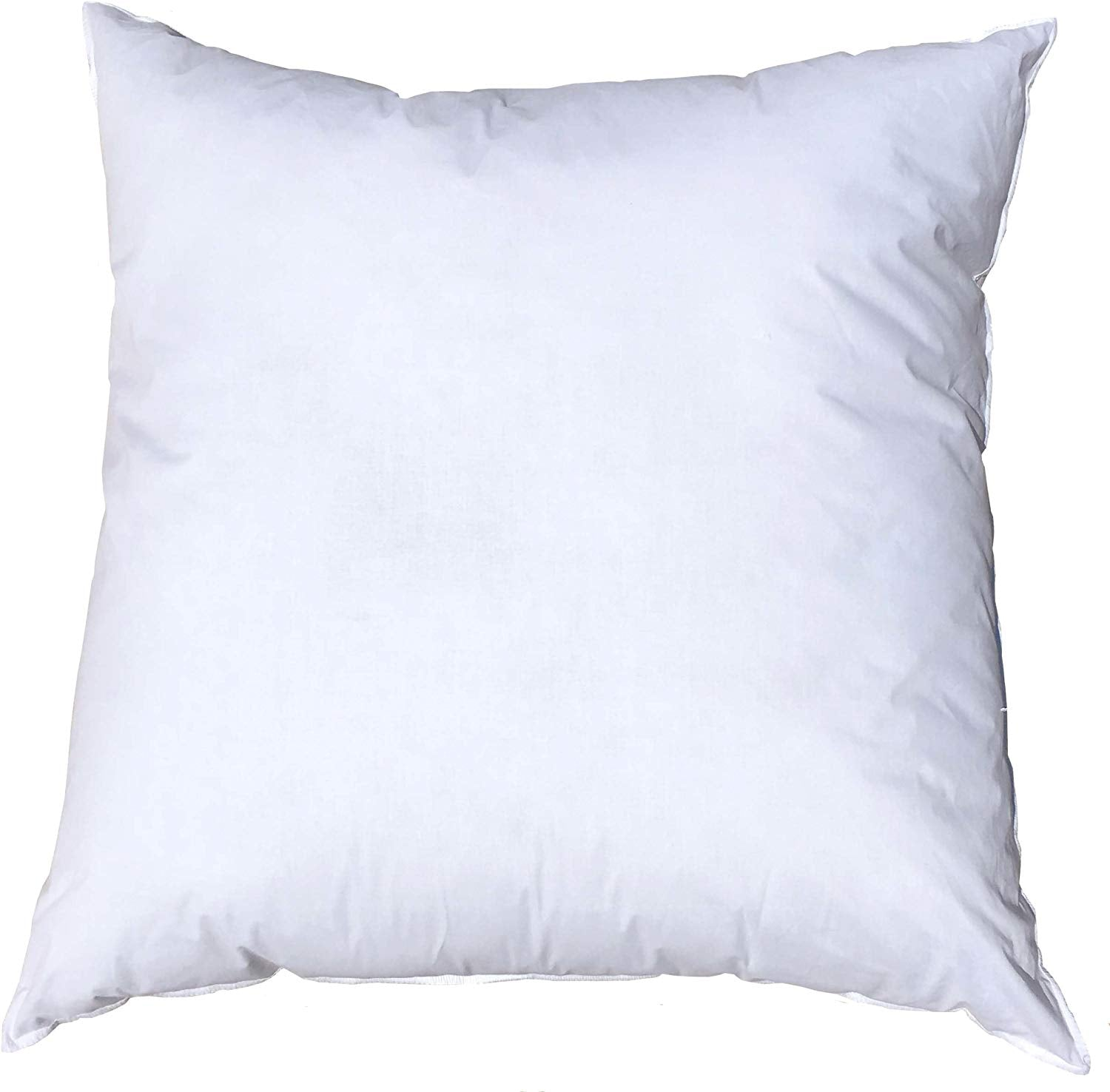 Decorative Pillow Insert