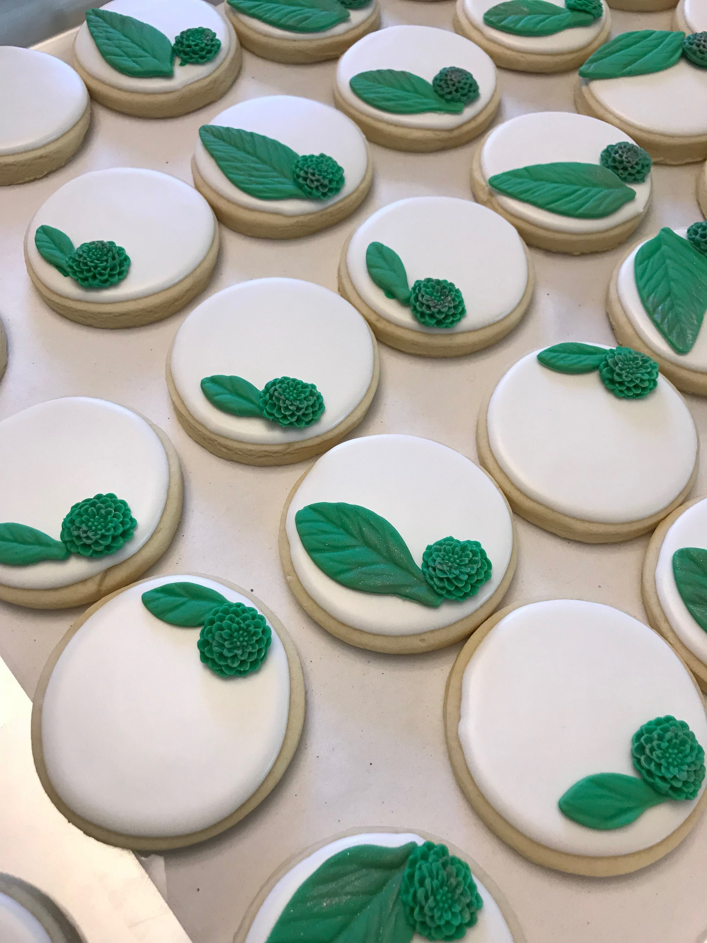 Succulent Sugar Cookie Boho Theme Just Baked Sweets