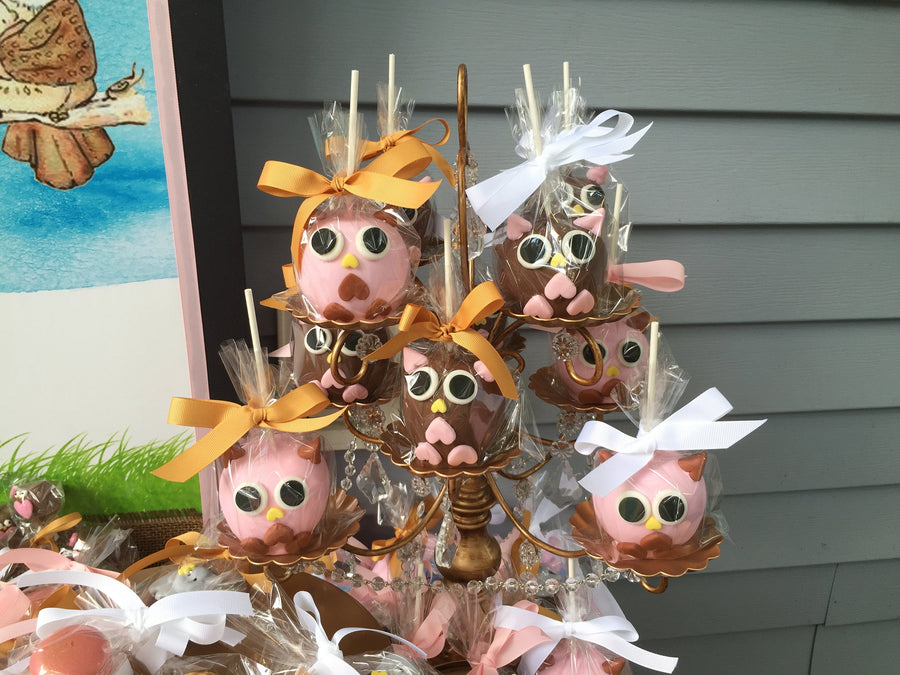 Owl Chocolate Covered Apples