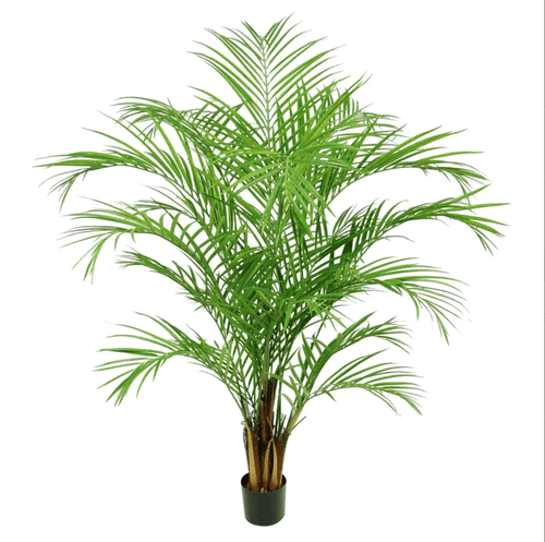 Artificial Areca Palm 1.8M Artificial Tropical Plants Dianna-Lynn Decor