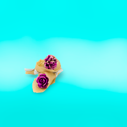 Amare Wear - Flower earrings Studs
