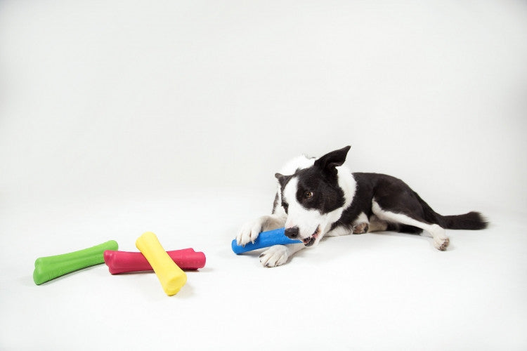 Pet-Friendly Soft Touch Design Delivers Remarkable Fundraising Dog Toy
