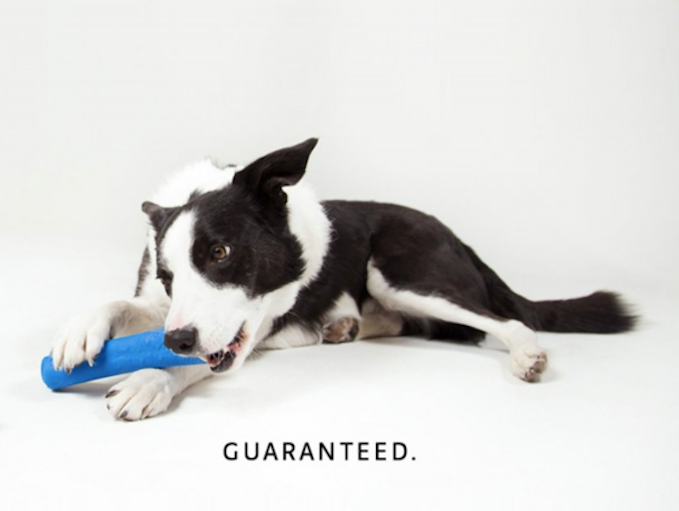 WO Bone | USA-Made Durable Dog Toy