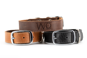 WO Leather Dog Collar