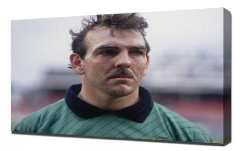 Everton Neville Southall - Canvas Art Print
