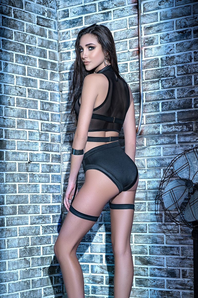 Exotic Three Piece Sheer Lingerie Set