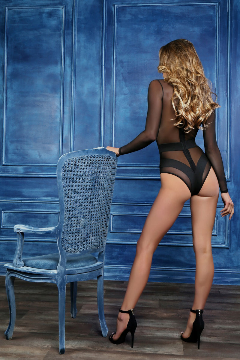 Long Sleeve Sheer Lingerie Bodysuit