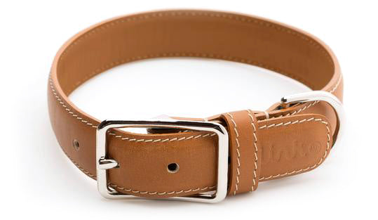 Classic Leather Collar
